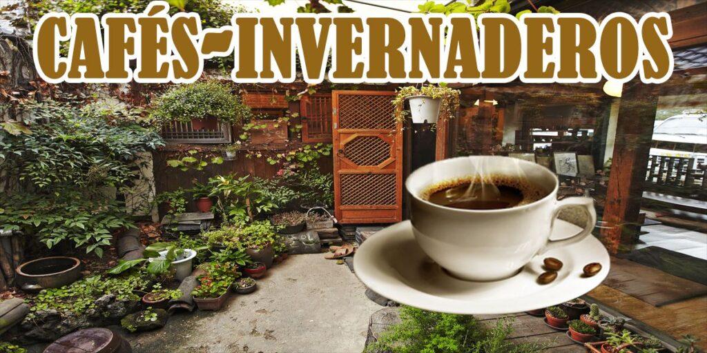 cafes-invernadero-de-corea