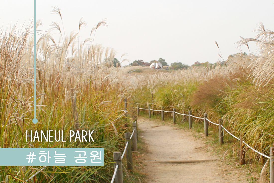 parque haneul
