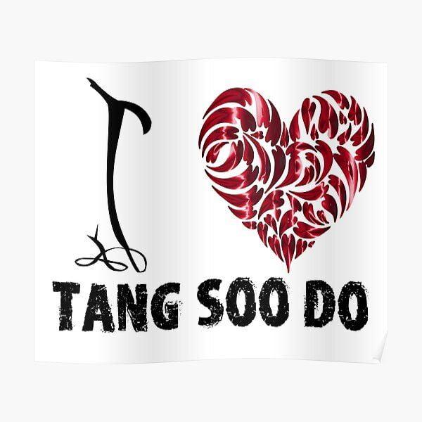 I love tang soo do